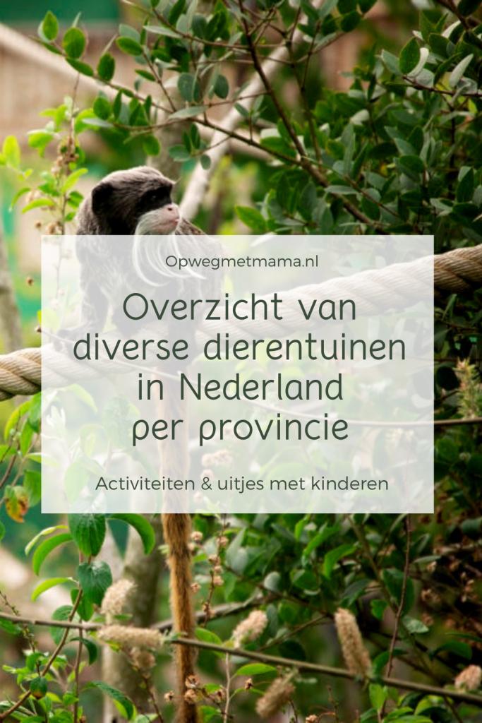 Overzicht van diverse dierentuinen in Nederland