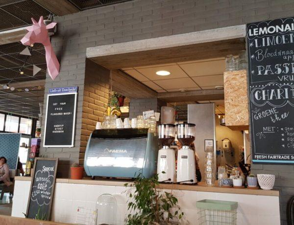enschede-kinderwinkels-stedentrip-kinderen-restaurant-stoet