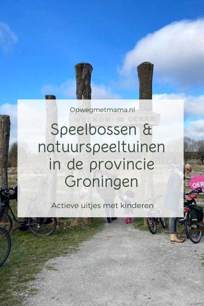 Speelbossen & natuurspeeltuinen in de provincie Groningen