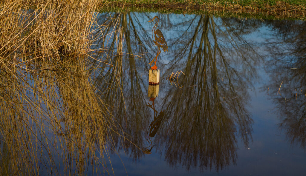 birdroute-diemerbos